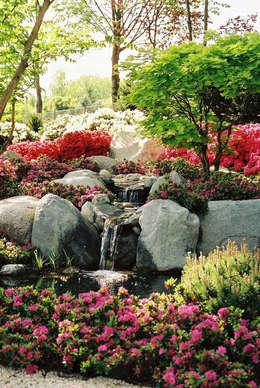 Blumenpark in Rain am Lech: moderner Garten von Kirchner Garten + Teich GmbH