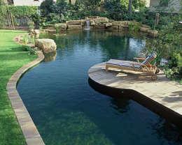 Kirchner Garten + Teich GmbH: modern tarz Bahçe