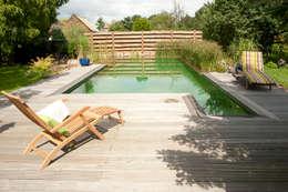 Moderne Pools: moderner Pool von MINNOVA BNS GmbH