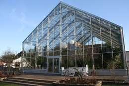 homify 360°: Ein Haus im Glashaus