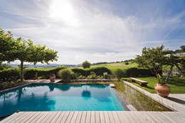 Садовые бассейны в . Автор – Balena GmbH