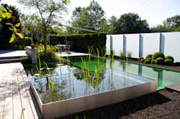 Kolam renang halaman by Balena GmbH