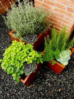Jardines de estilo moderno por Simbiosi Estudi de Paisatgisme