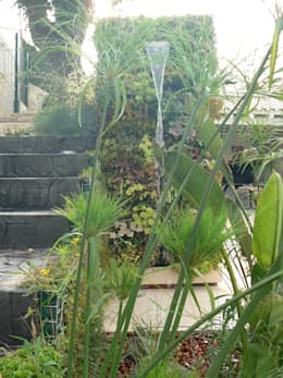 eclectic Garden by PhytoKinetic S.L.