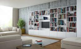 Regal fürs Wohnzimmer: moderne Wohnzimmer von meine möbelmanufaktur GmbH