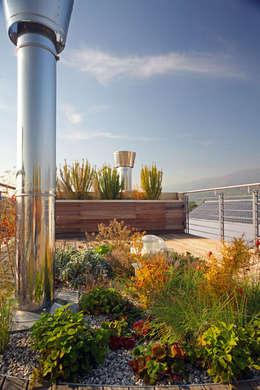 Terrazze giardini piscine idee per spazi all 39 aperto - Piscina san carlo milano ...