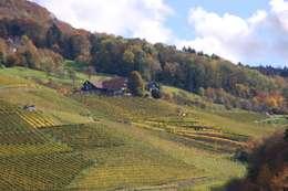 Case in stile in stile Eclettico di Schlafen im Weinfass