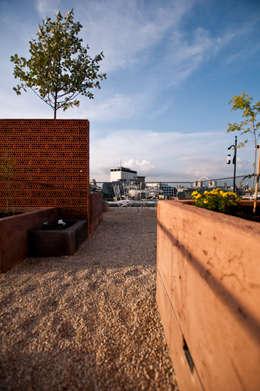 Terrazas de estilo  por Urban Roof Gardens