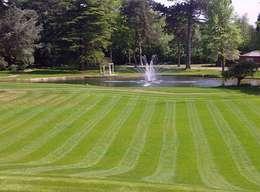 Jardines de estilo rural por Cool Gardens Landscaping