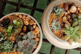 minimalistischer Garten von Luiza Soares - Paisagismo