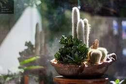 Jardín de estilo  por Luiza Soares - Paisagismo