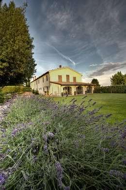 Projekty,  Ogród zaprojektowane przez archbcstudio