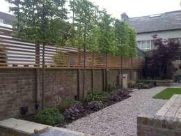 Jardin de style  par Cool Gardens Landscaping