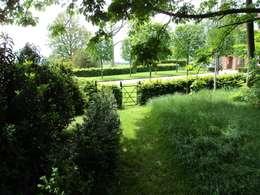 Deakinlock Garden Designが手掛けた