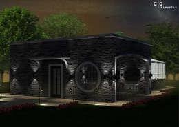 CO Mimarlık Dekorasyon İnşaat ve Dış Tic. Ltd. Şti. – N.G. Kır evi: modern tarz Evler