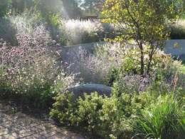 Jardin privé à Colmar : Jardin de style de style Moderne par SCHAEDELE PAYSAGISTE