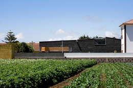 Maisons de style de style Moderne par equipo olivares