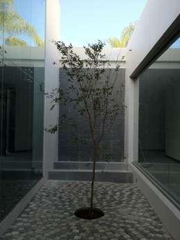 modern Garden by Arki3d
