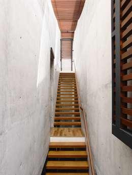 Well of Light:  Corridor, hallway by HYLA Architects