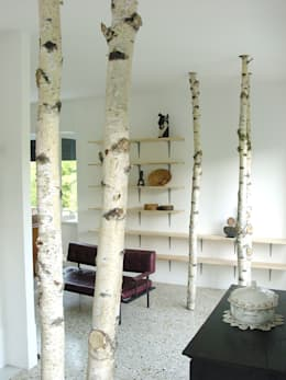 Casa Paian: Case in stile  di Cliostraat