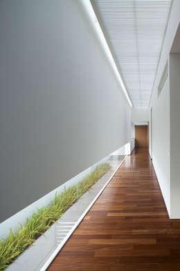 Pasillos y recibidores de estilo  por Hernandez Silva Arquitectos