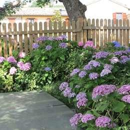 Jardins modernos por alessia brignardello