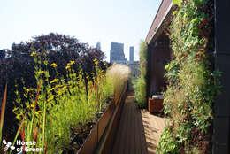 Terras Den Haag:  Terras door House of Green