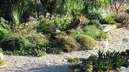 door Banzai Jardin Japonais