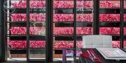 Windows by Boutique de Arquitectura  (Sonotectura + Refaccionaria)