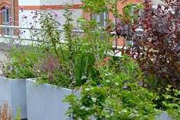 Dachterrasse und Dachgarten in Berlin:  Terrasse von Nelka