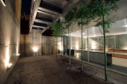 Casa Gracia: Jardines de estilo moderno por Gracia Studio