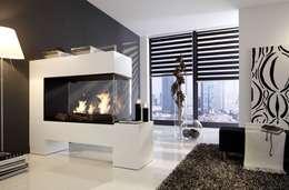 Aspect SPlan-13-BE - Ethanolkamin: moderne Wohnzimmer von Kamin-Design GmbH & Co KG