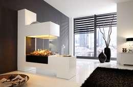 Lieblich Elektrokamin Aspect SPlan 21 EL Mit Elektroeinsatz Modul L: Moderne  Wohnzimmer Von Kamin