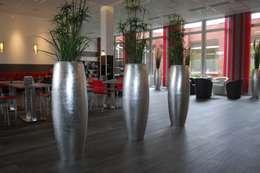 Jardines de estilo moderno por AE Trade Online