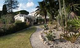 studiodonizelli: modern tarz Bahçe