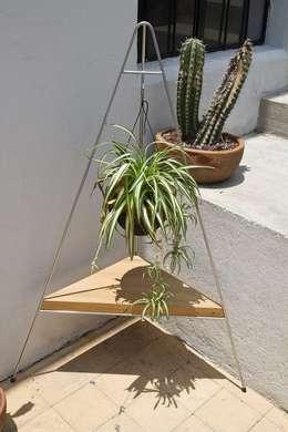 Esquinero : Jardín de estilo  por The Curious