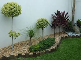 Taman by VIVERO CUMBRES ELITE
