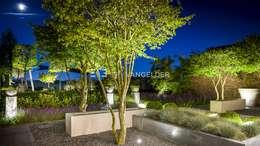 Moderne villatuin Middelburg: moderne Tuin door ERIK VAN GELDER | Devoted to Garden Design