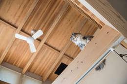 田村の家: Sola sekkei koubouが手掛けた壁&フローリングです。