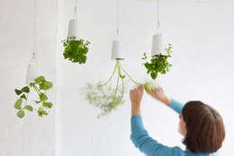 Binnenbeplanting door Greenbop