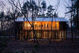 House in Daisen: 大角雄三設計室が手掛けた家です。