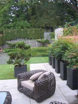 Redington: modern Garden by Andrew Wenham