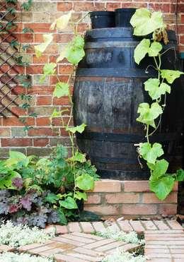 Dawn Isaac Garden Design: kırsal tarz tarz Bahçe