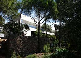 Maison sur pilotis: Maisons de style  par Hamerman Rouby Architectes