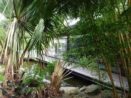 création d'une piscine et son Poolhouse.: Piscine de style de style Moderne par Christian Larroque