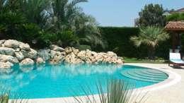 mediterranean Pool by  MELLOGIARDINI EXTERIOR DESIGNERS