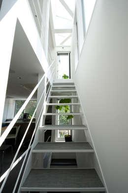 階段(2F~3F): 余田正徳/株式会社YODAアーキテクツが手掛けた廊下 & 玄関です。