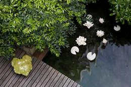 Projekty,  Ogród zaprojektowane przez AGRISOPHIA NATURAL GARDEN DESIGN