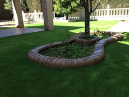 modern Garden by Allgrass Solutions