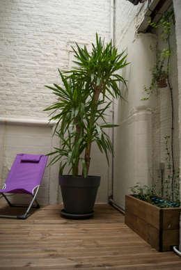 Jardines de invierno de estilo moderno por L&D Intérieur